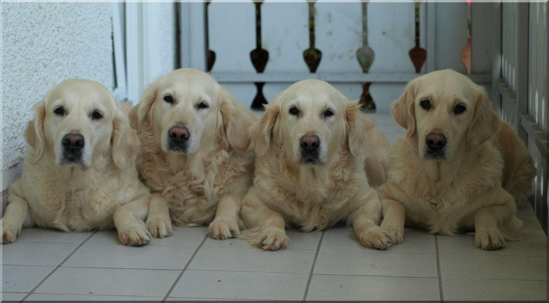quadruple